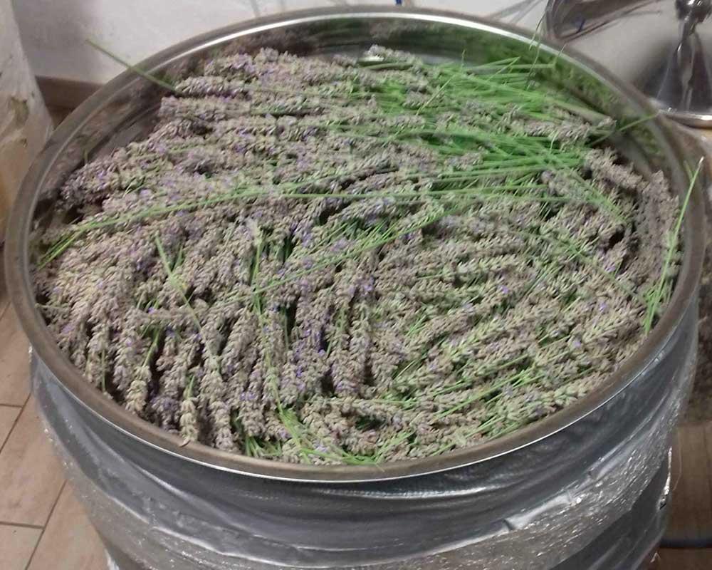 distillazione il brusafer